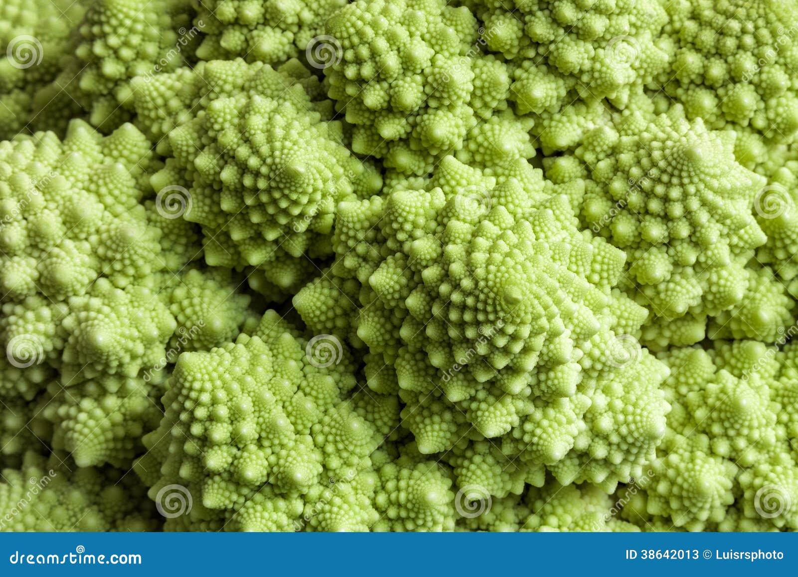 Mathematics In Nature Stock Photos - Image: 38642013