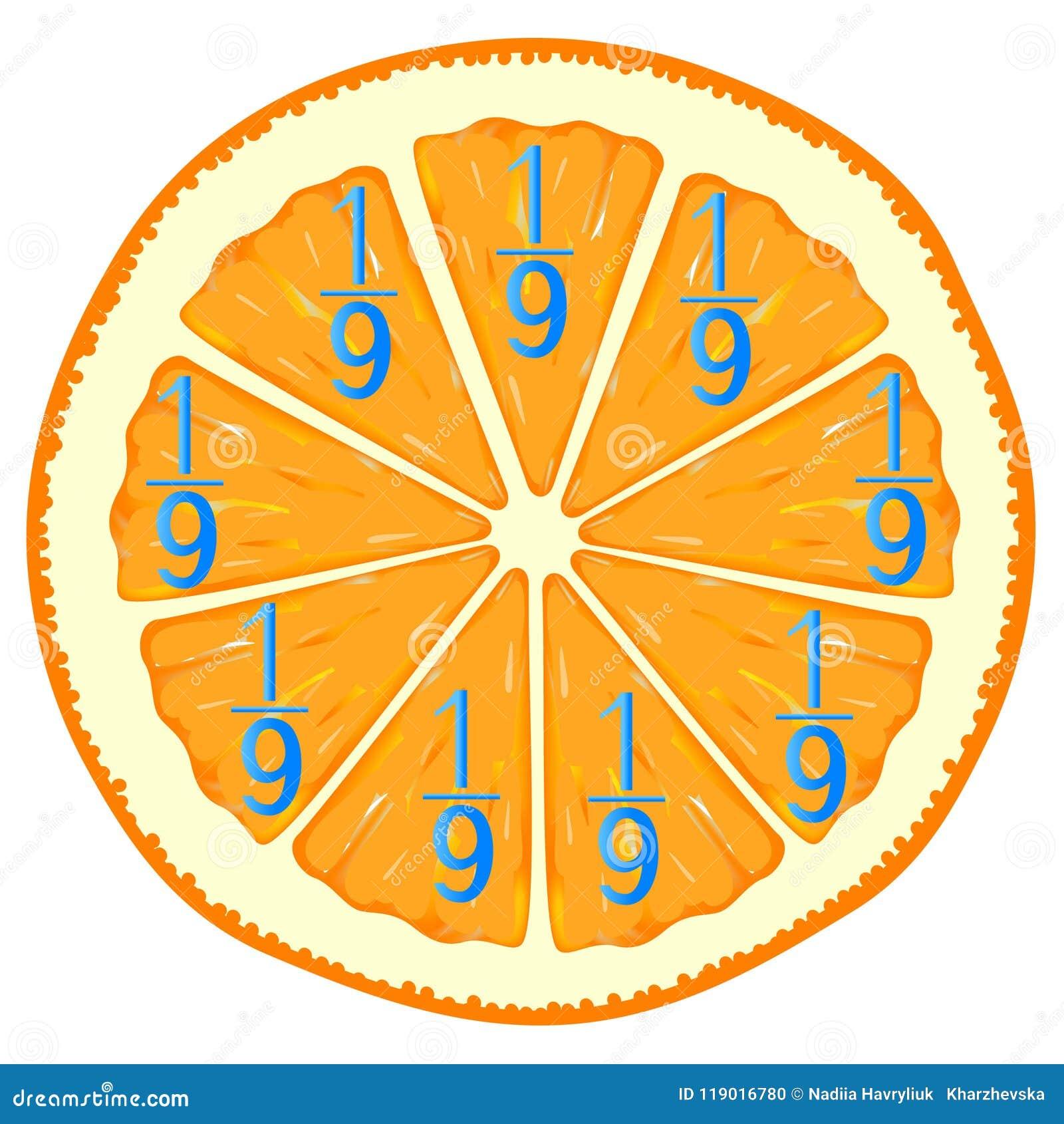 Mathematische Spiele für Kinder Studieren Sie die Bruchzahlen, Beispiel mit Orange