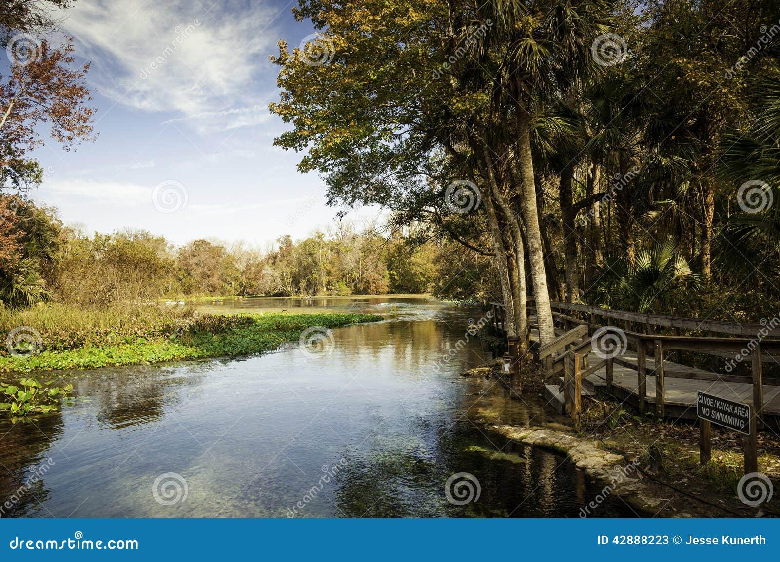 Matin aux ressorts de Wekiva, la Floride