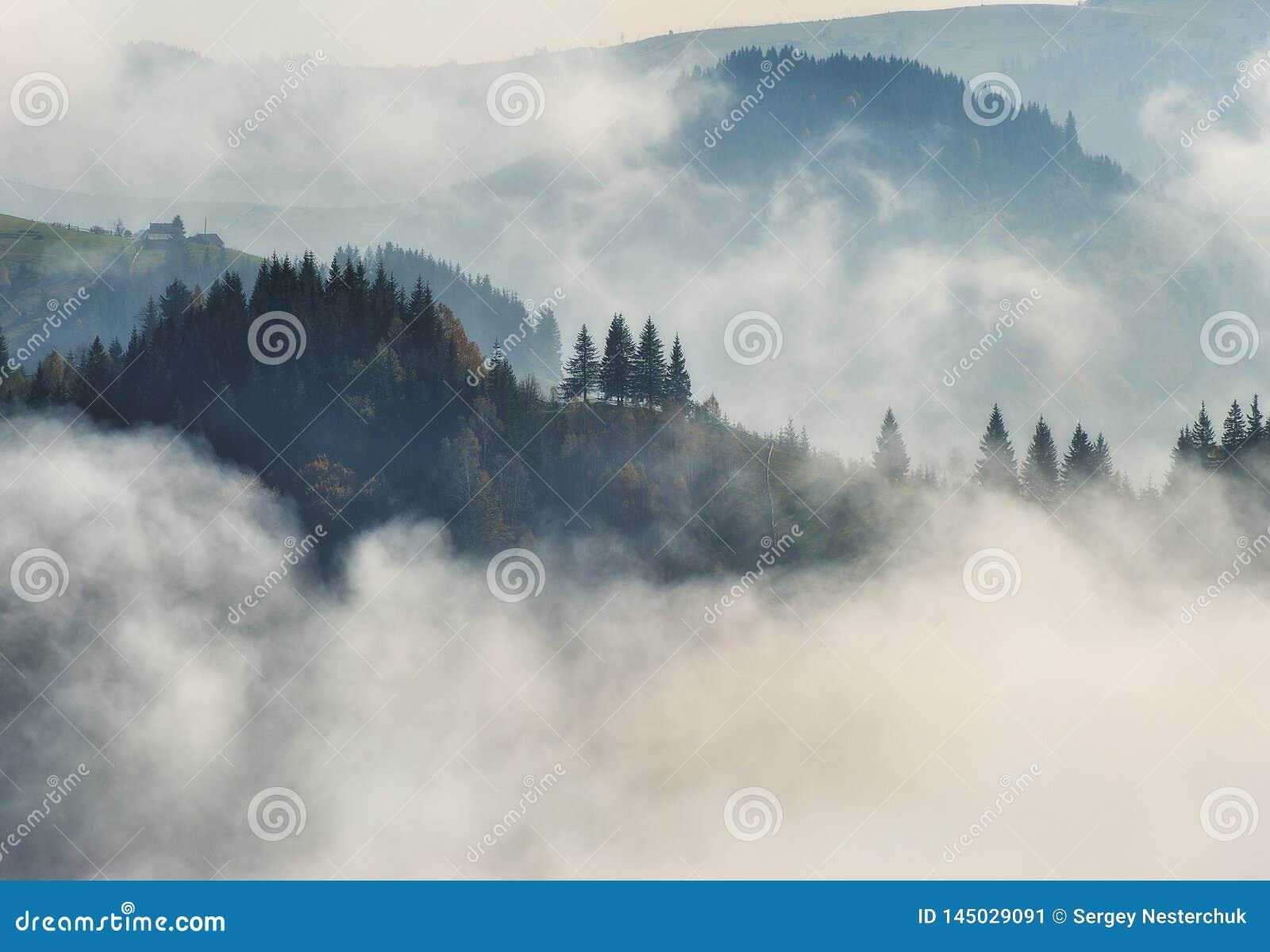 Matin d automne Lever de soleil brumeux dans les montagnes carpathiennes