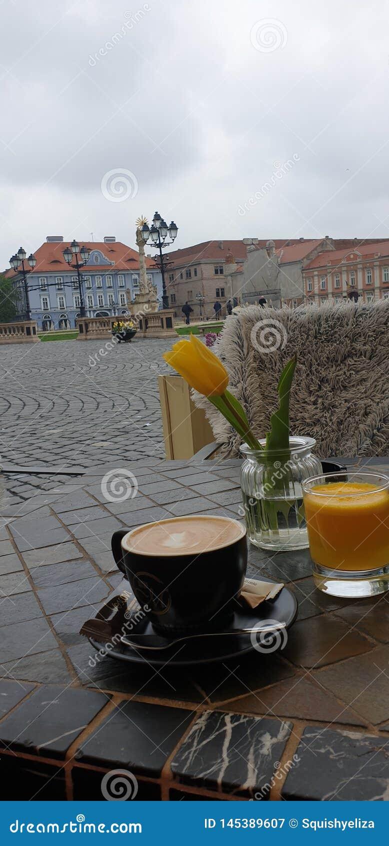 Matin de week-end de ressort dans Timisoara Roumanie à un endroit de café dans la place des syndicats de place d Unirii