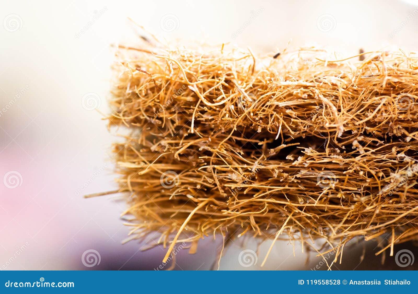 Matras met kokosvezel Kokosnotencoir Geraspte kokosnotenshell voor de productie van matrassen Textuur, natuurlijke achtergrond