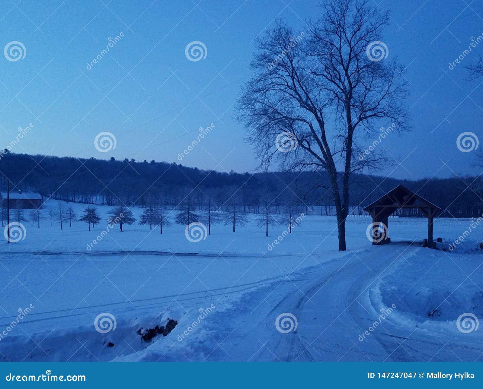 Mattina di inverno nello Skook