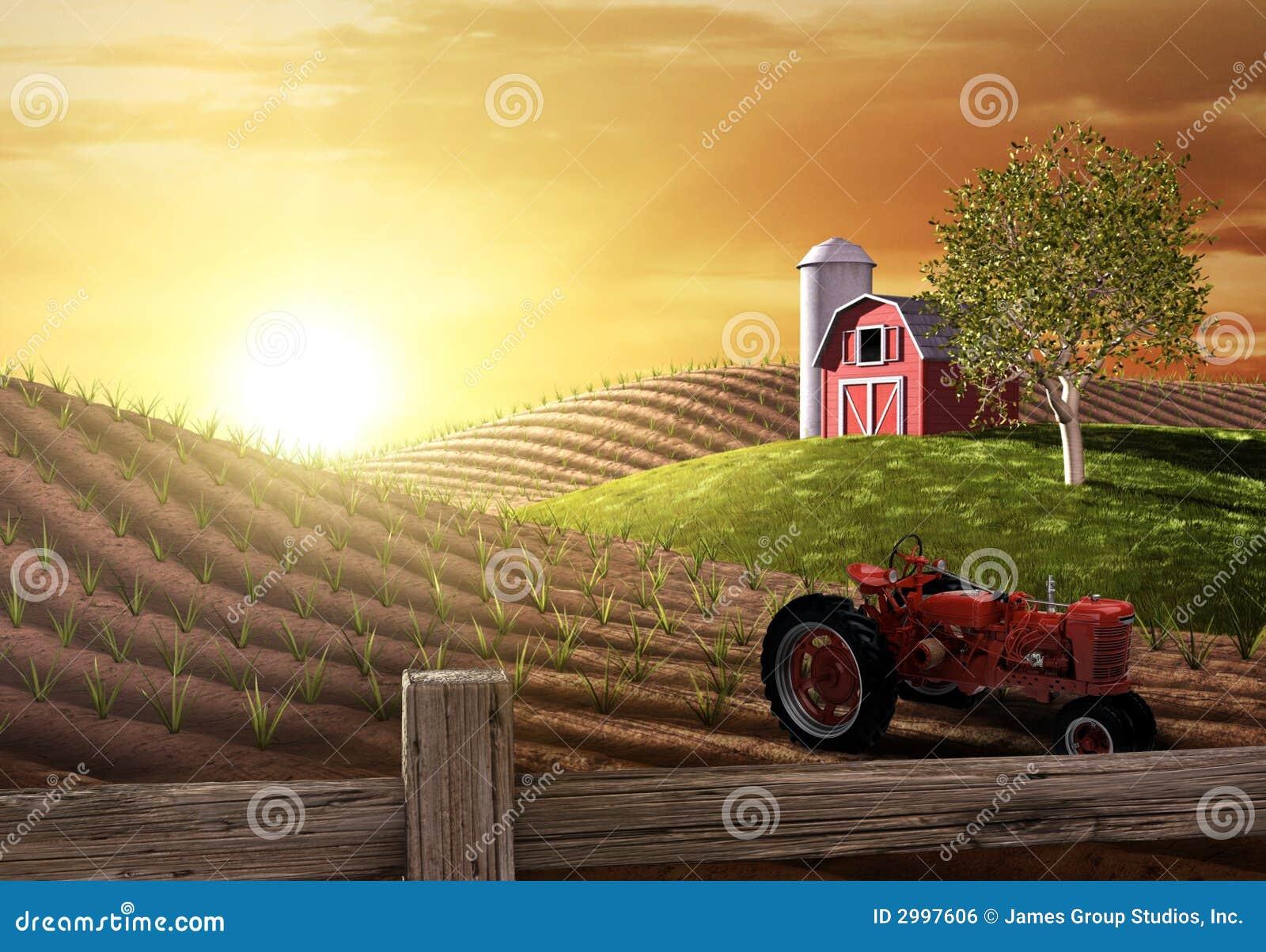 Mattina sull azienda agricola
