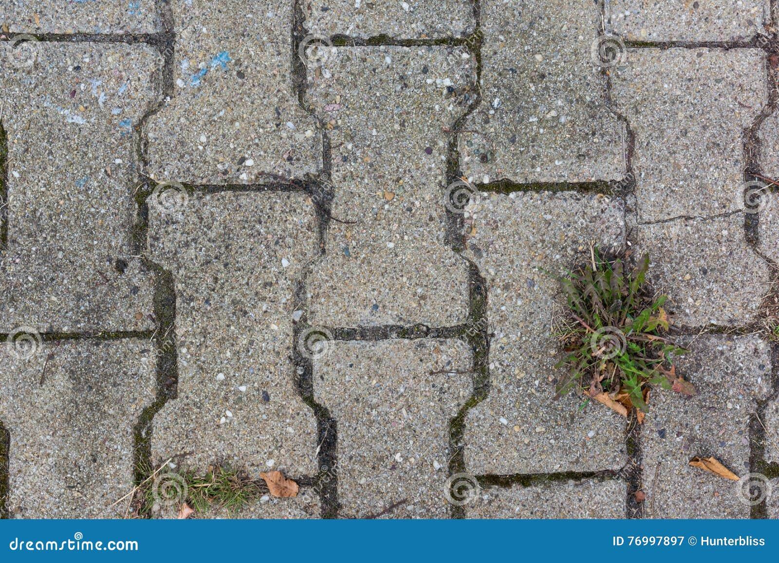 Mattonelle grey texture weed outdoors ruvido di pietra concreto