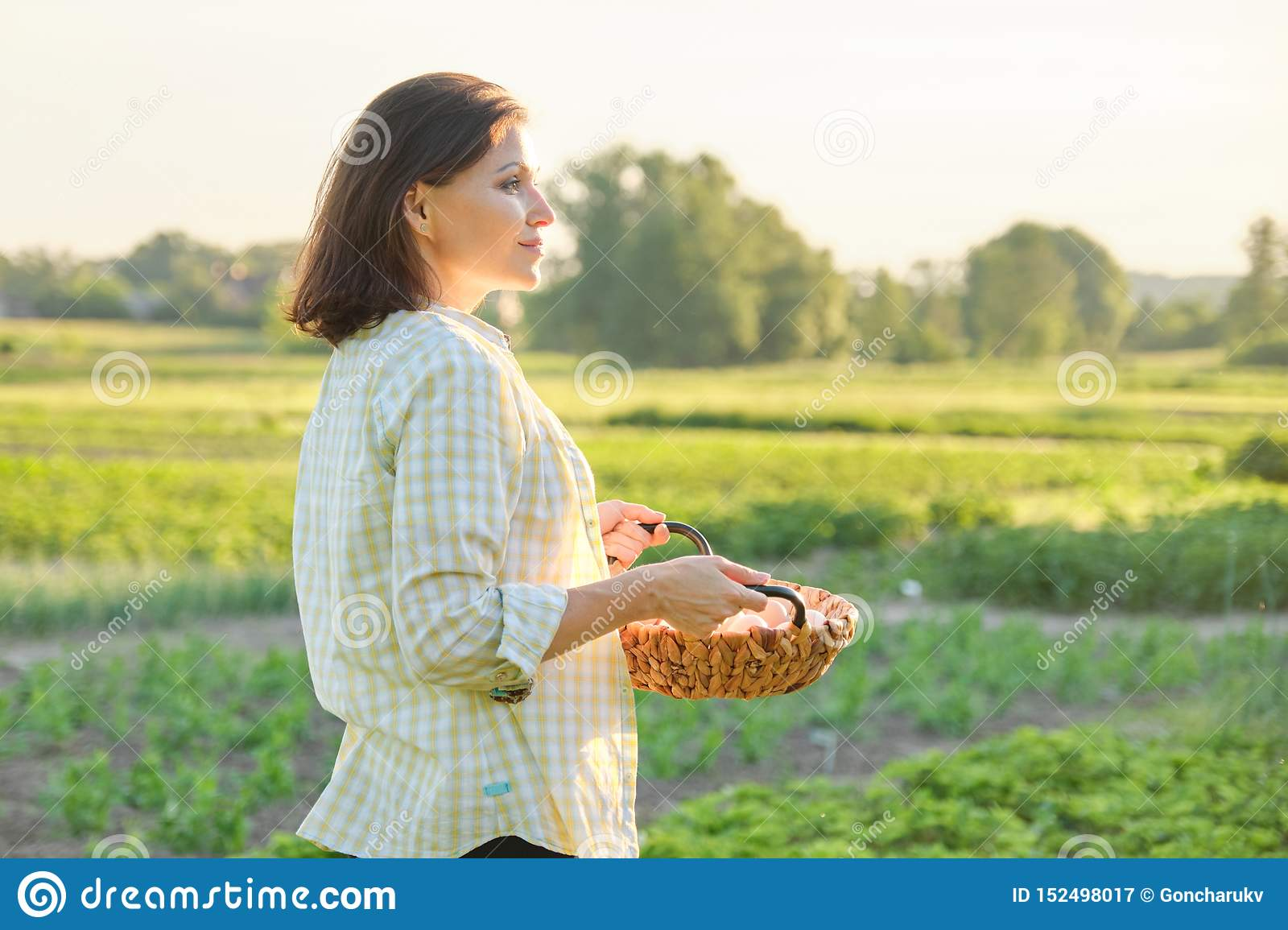 Mature beautiful woman farmer with basket of fresh eggs