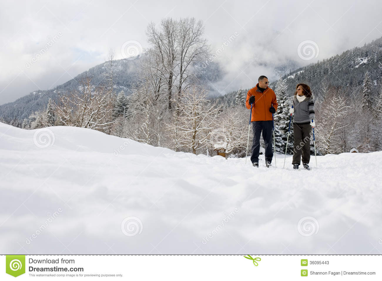 Download A mature couple skiing stock image. Image of boomers - 36095443
