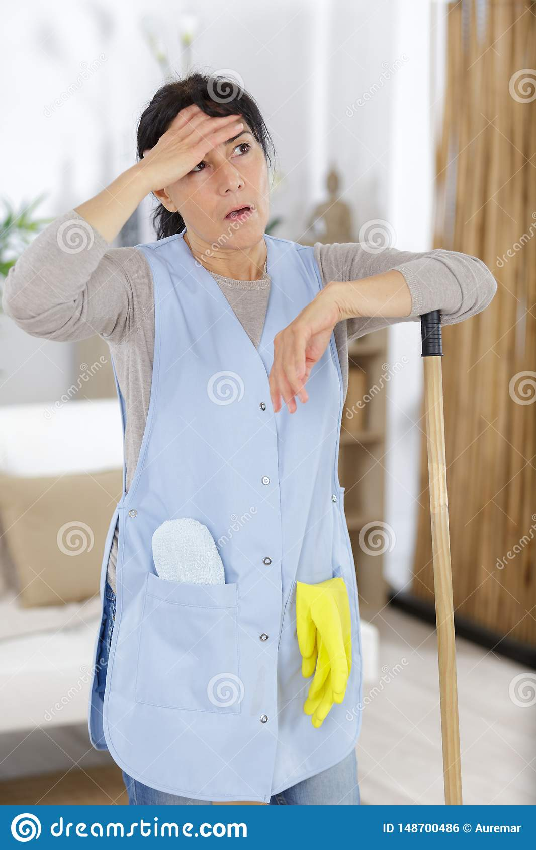 Mature House Keeper Cleaning House Stock Photo Image Of Home