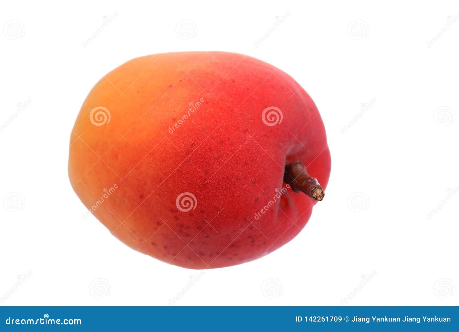 Ripe red apricot