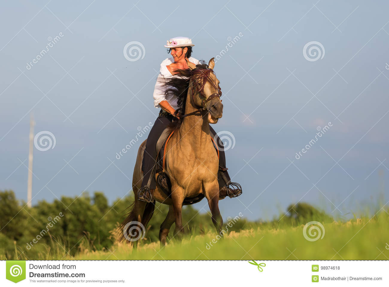 mature woman riding an andalusian horse stock photo - image of horse