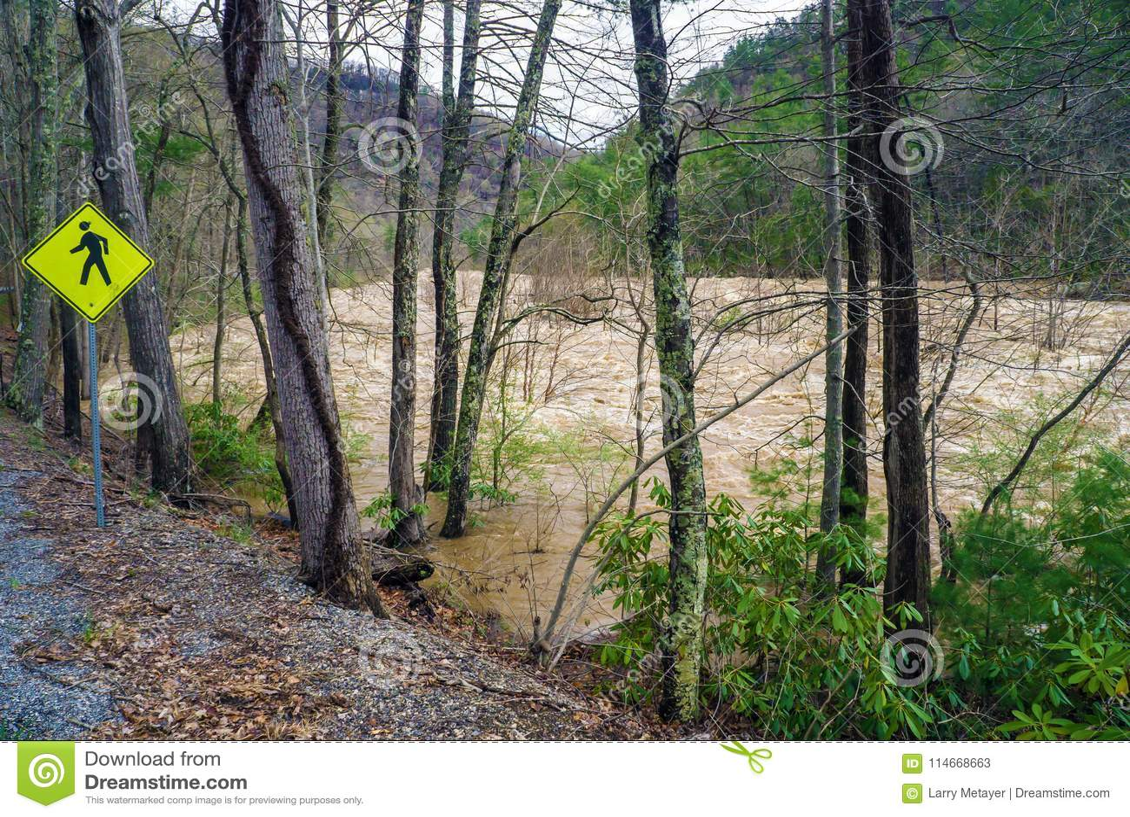 Maury河的洪水的力量