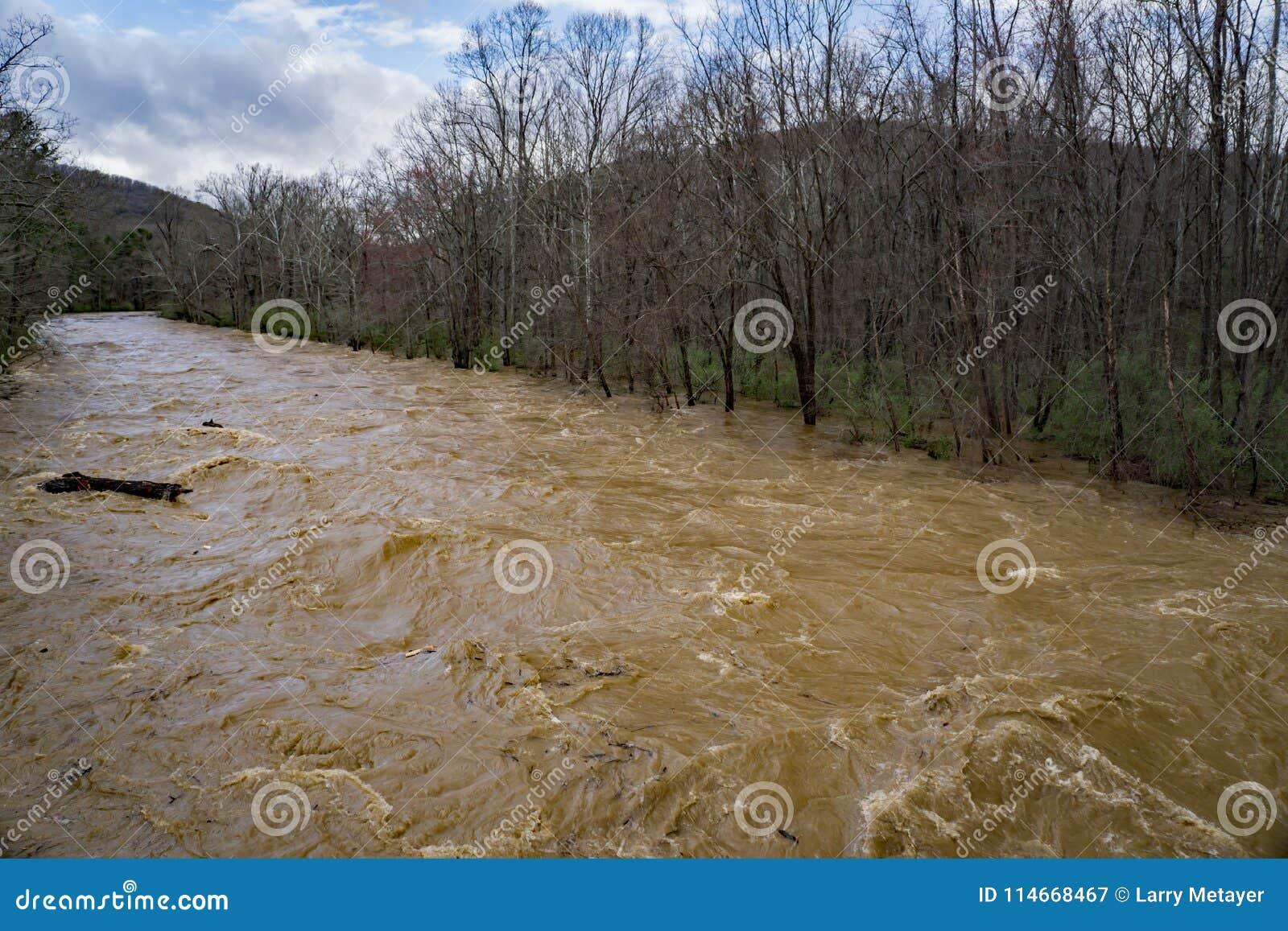 Maury River på flodetappen som översvämmar liggande områden för bottenläge