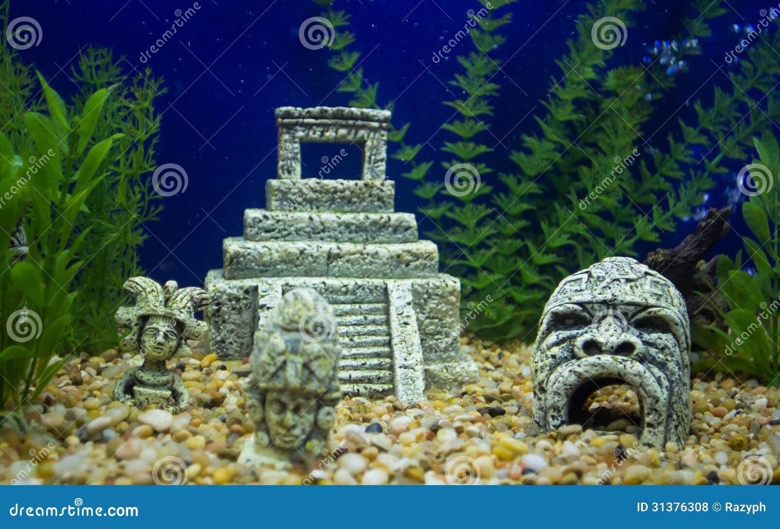Aquarium fish tank download - Maya Vestiges In Fish Tank