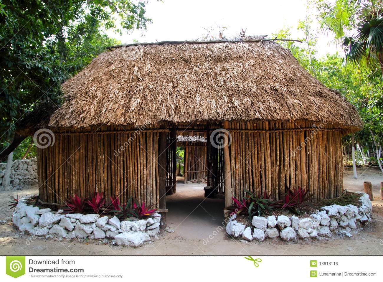 Mayan mexico wood house cabin hut palapa stock photo for Wood house images
