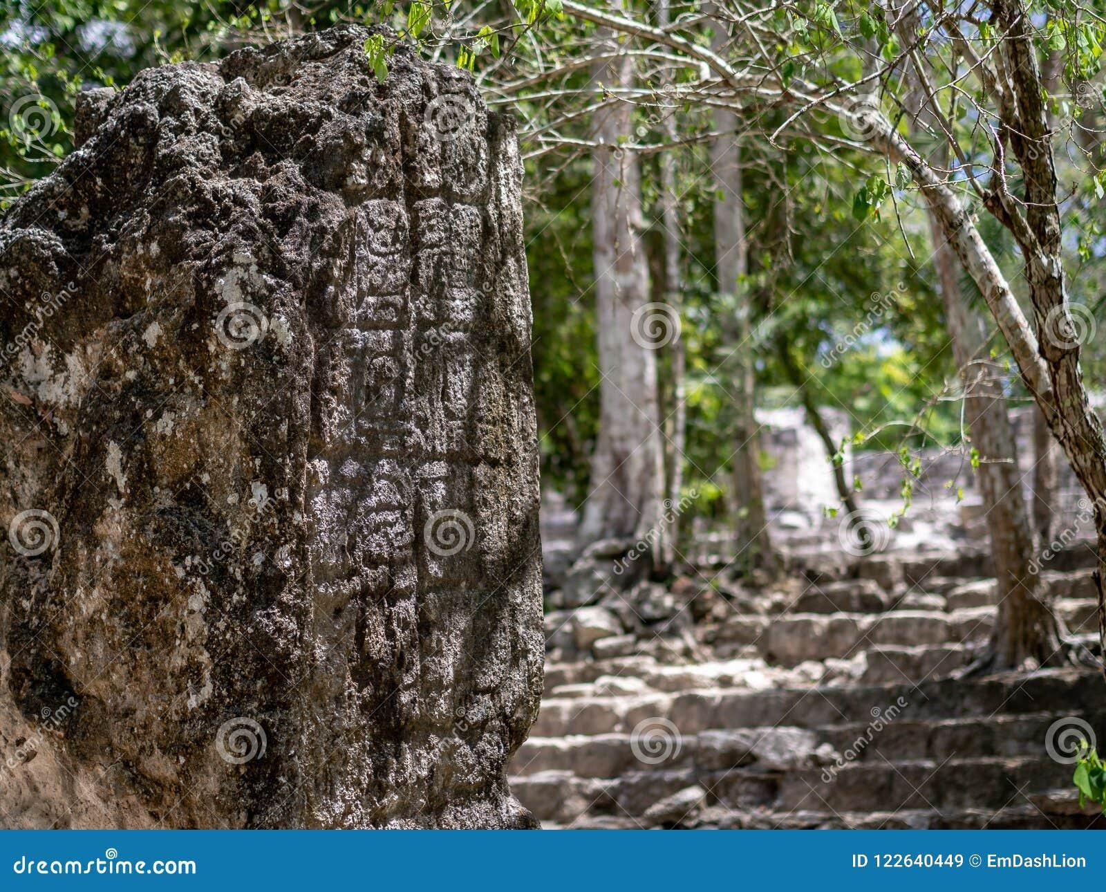 Mayan stela in de Mexicaanse wildernis met het hiëroglyfische schrijven in C