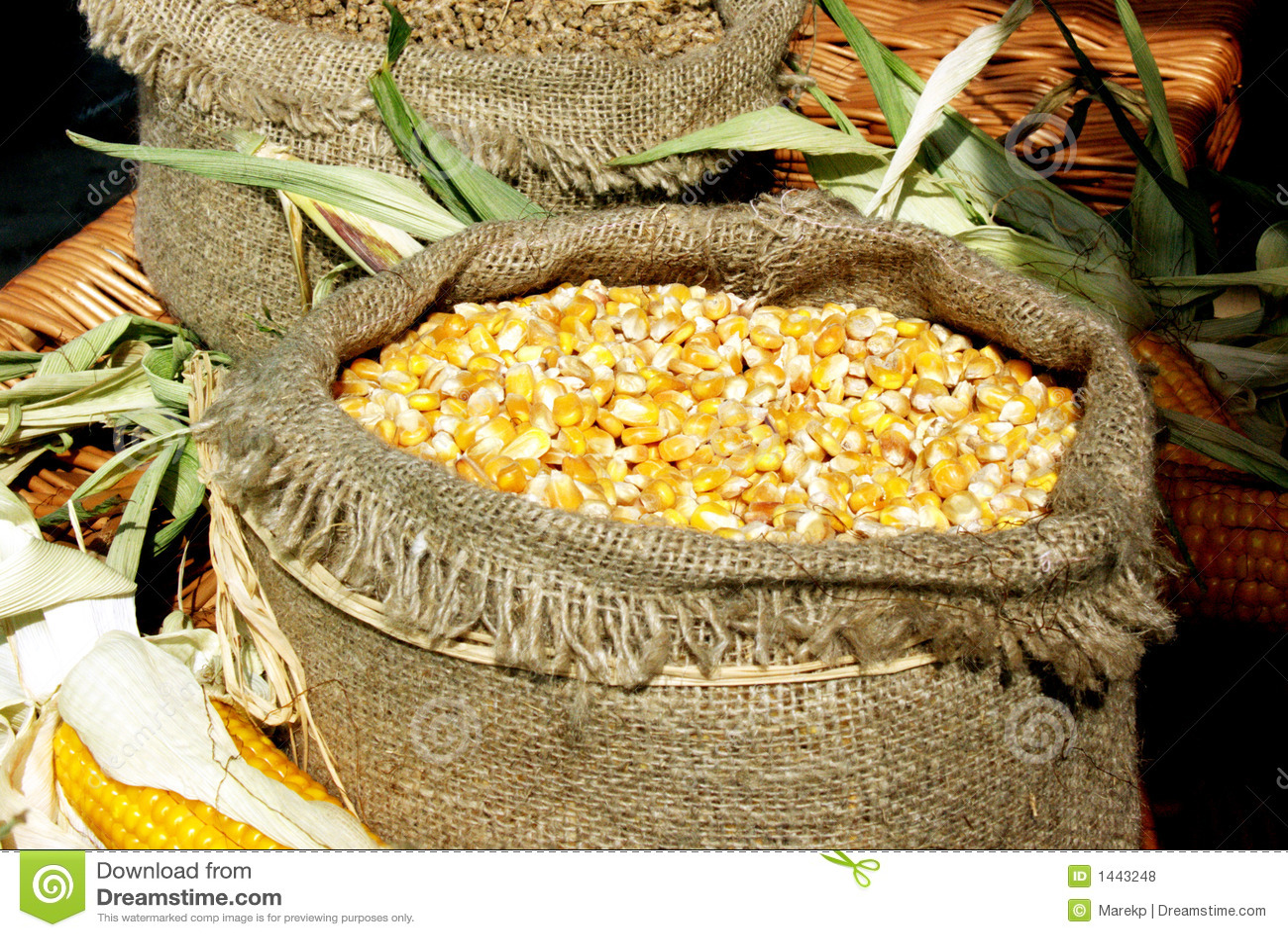 how to build a corn maze