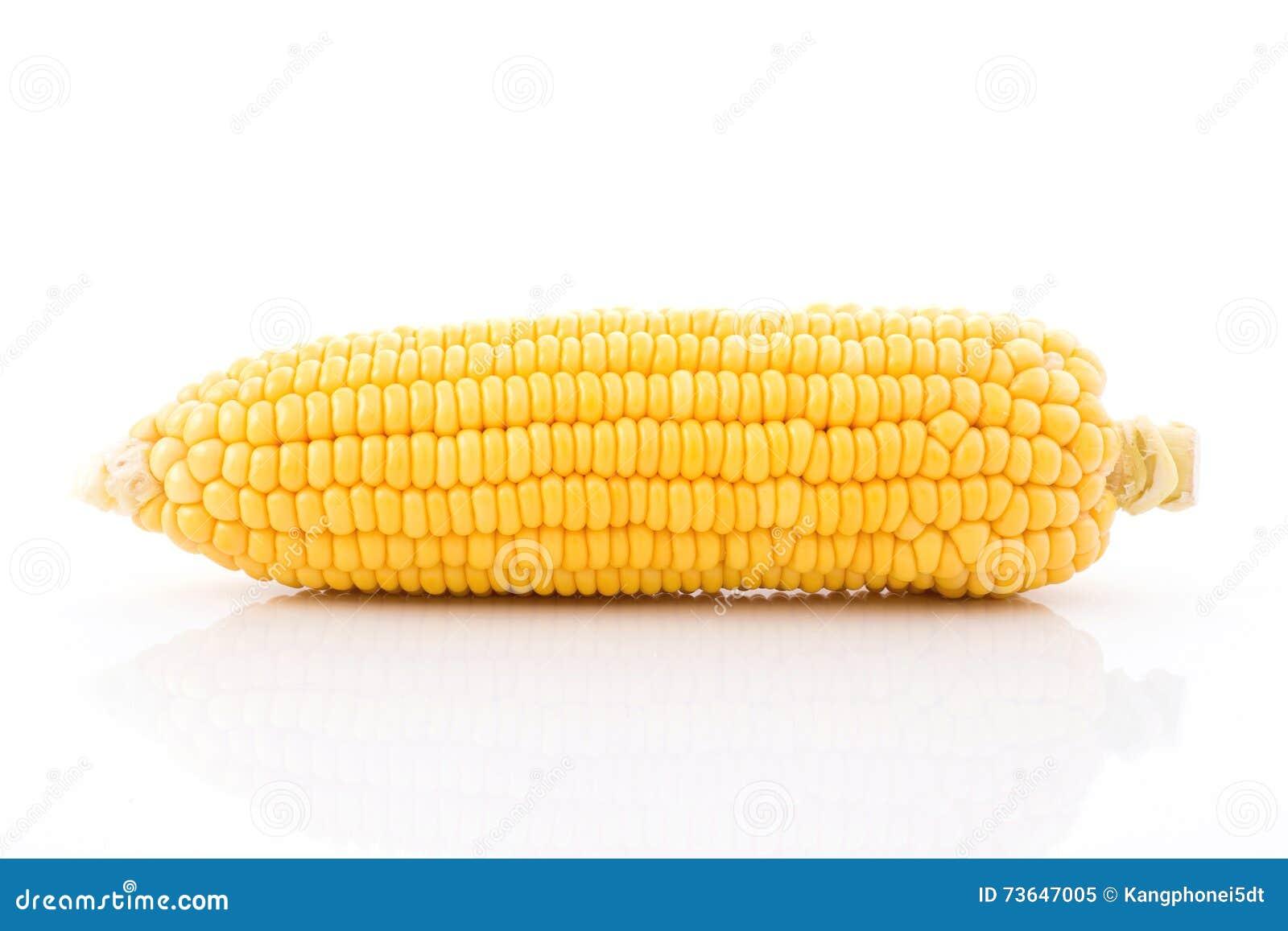Mazorca de maíz aislada en el fondo blanco con Con las hojas verdes