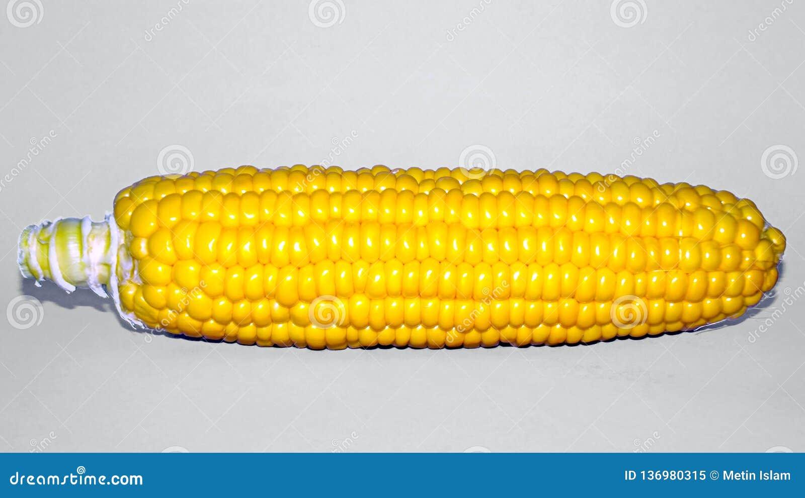 Mazorca de maíz amarilla y fondo blanco