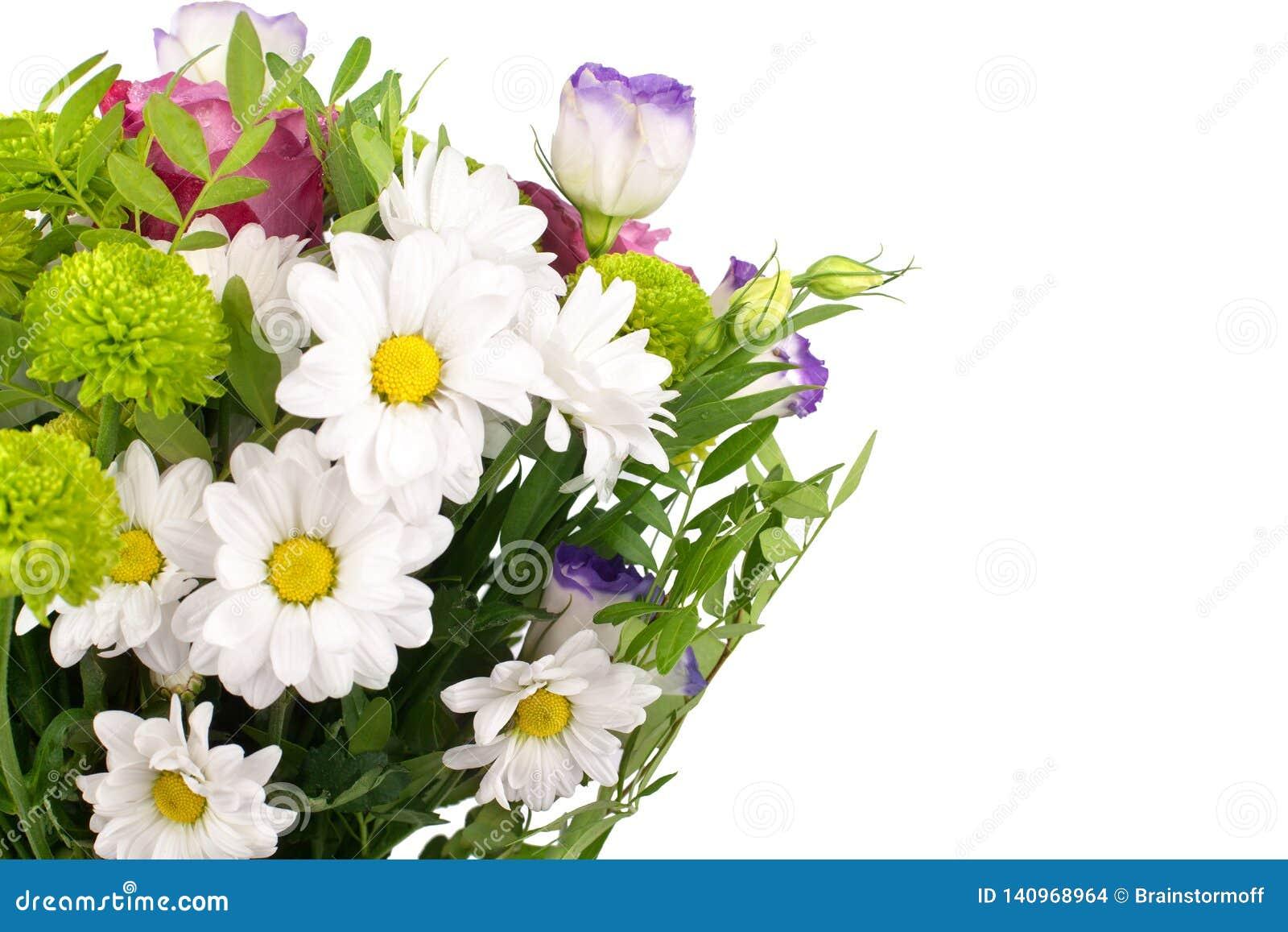 Mazzo dei crisantemi bianchi dei fiori, rose rosa con le foglie verdi sulla fine isolata fondo bianco su