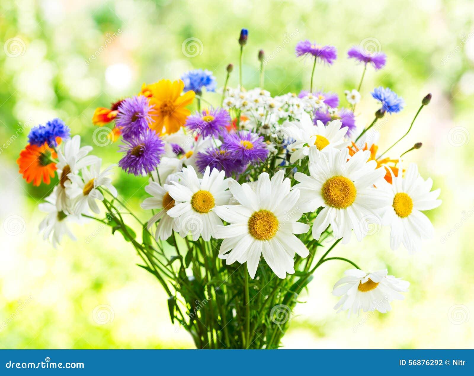 Mazzo dei fiori di estate