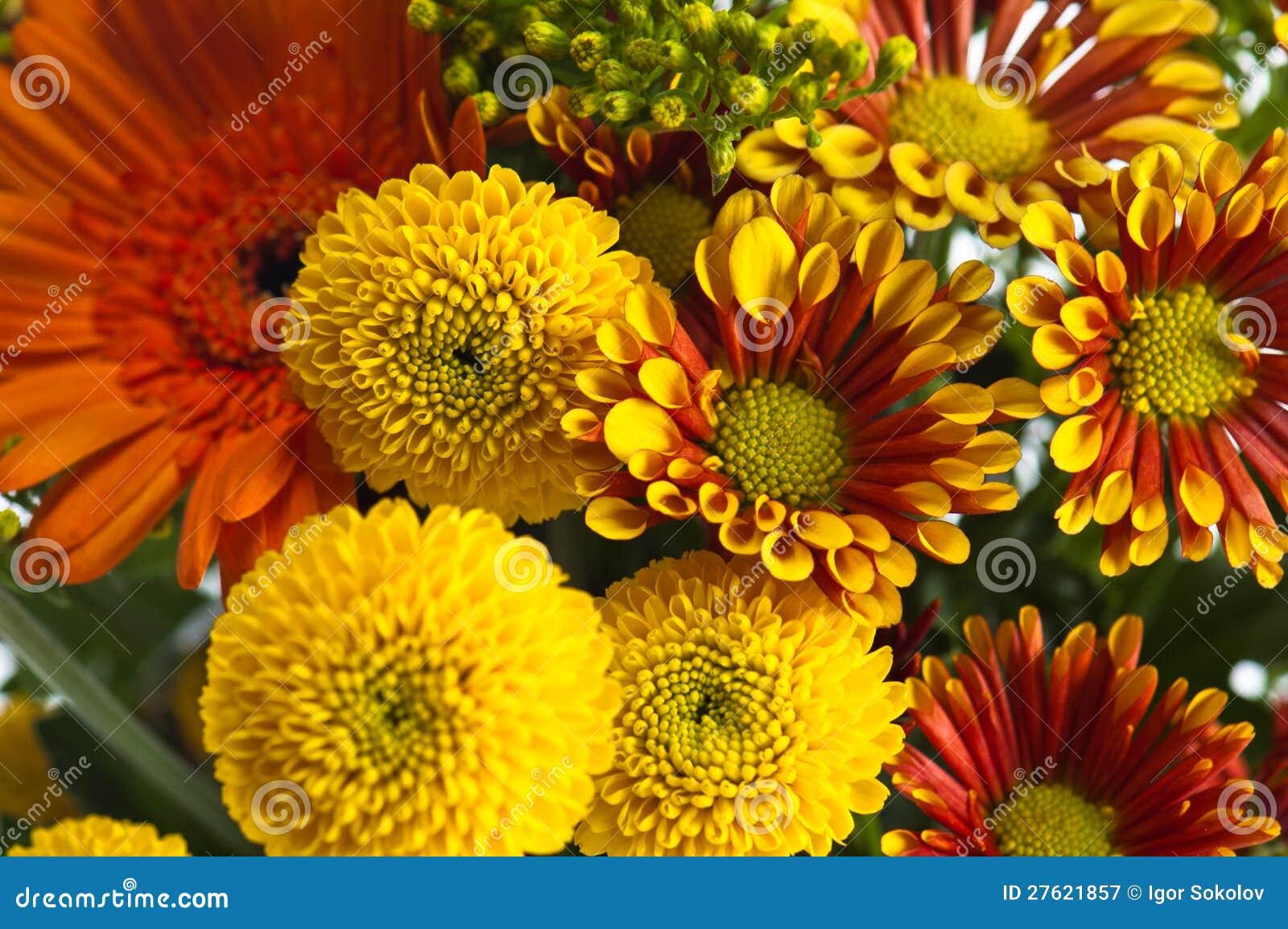 Mazzo dei fiori di estate primo piano immagine stock - Fiori da giardino primavera estate ...