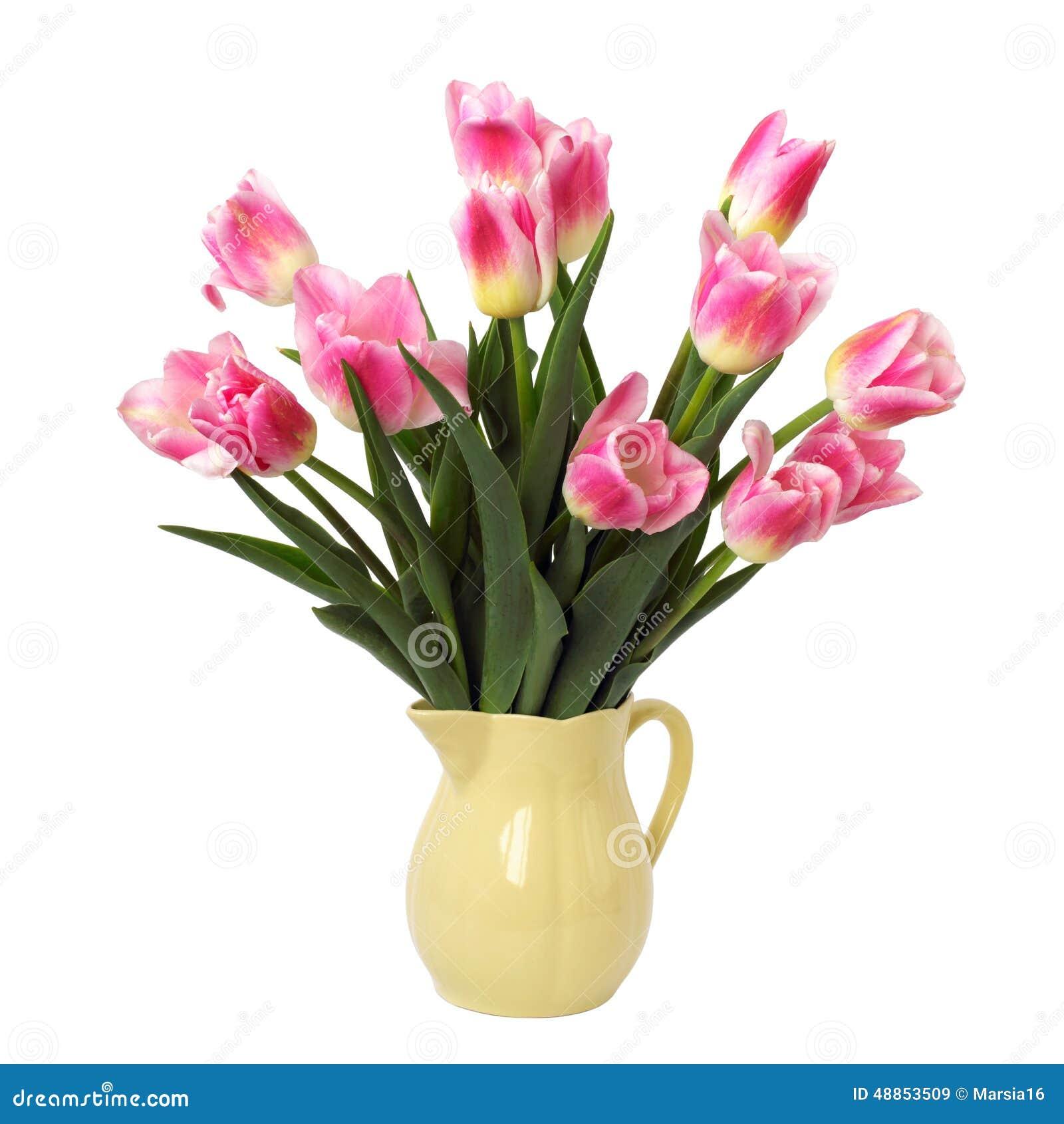 Mazzo dei tulipani dentellare