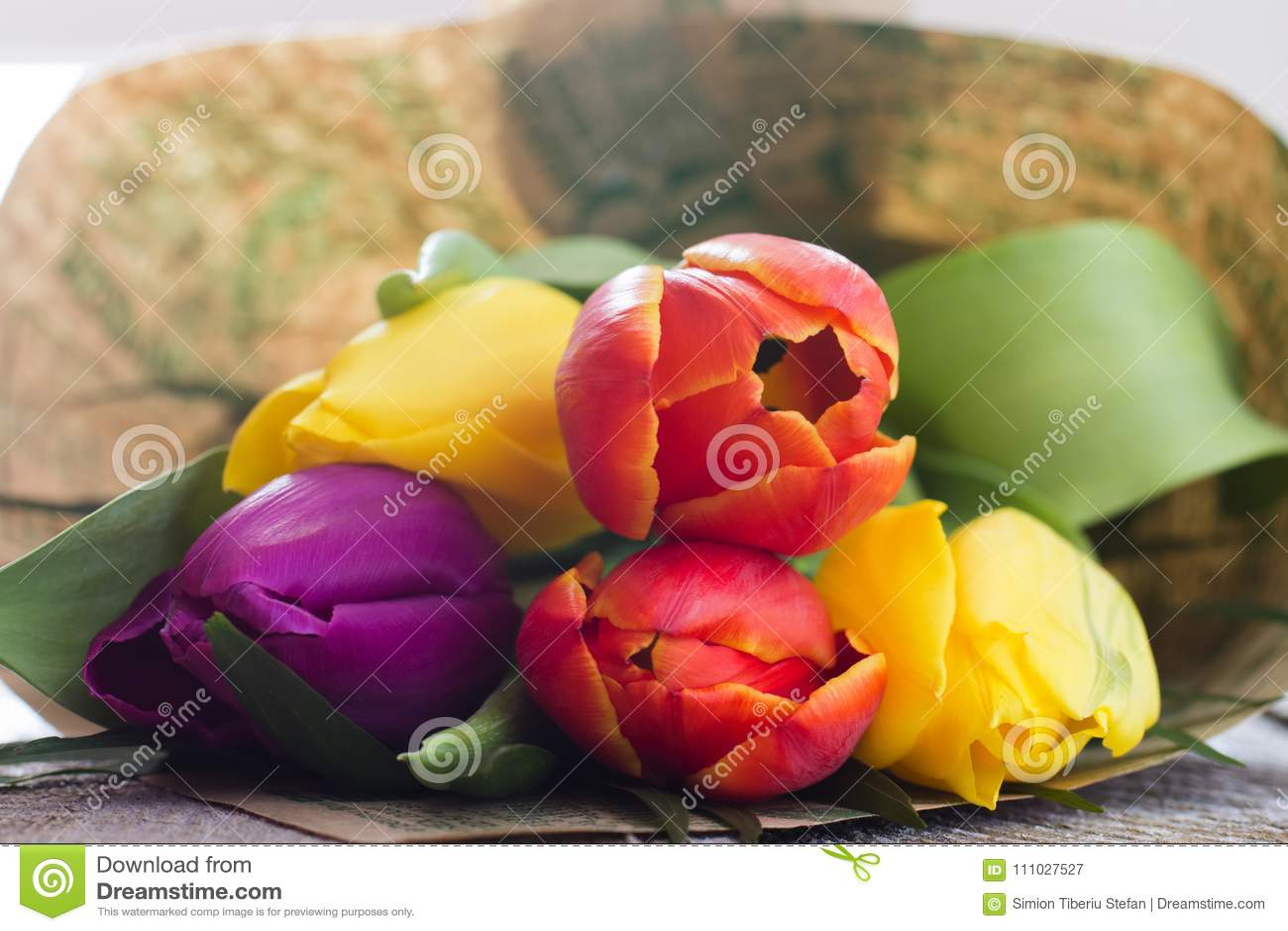 Mazzo dei tulipani variopinti
