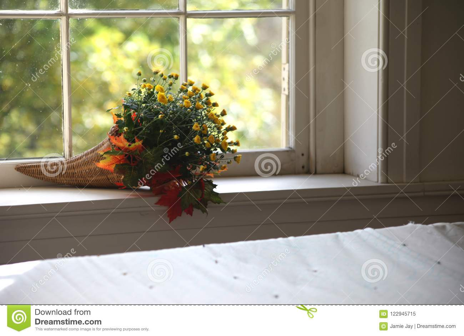Davanzale Interno Della Finestra mazzo del fiore di autunno sul davanzale interno della