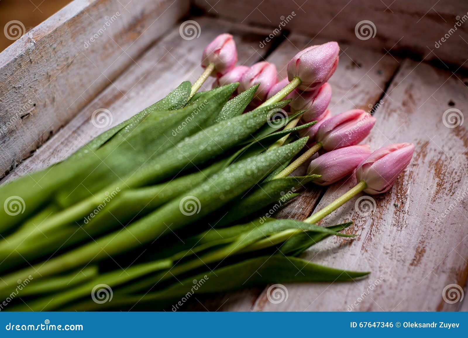 Mazzo del tulipano