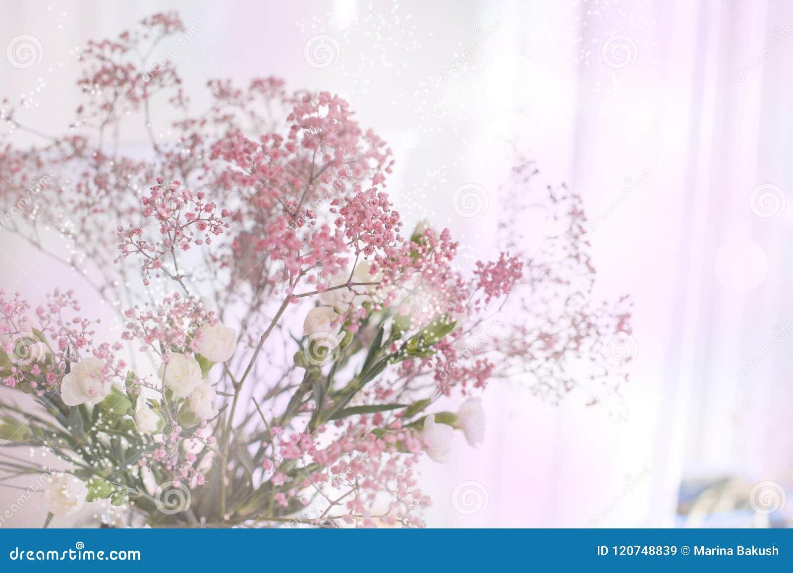 Mazzo della sorgente dei fiori Fondo dei colori vaghi Abbagliamento di colore scheda Spazio libero per testo