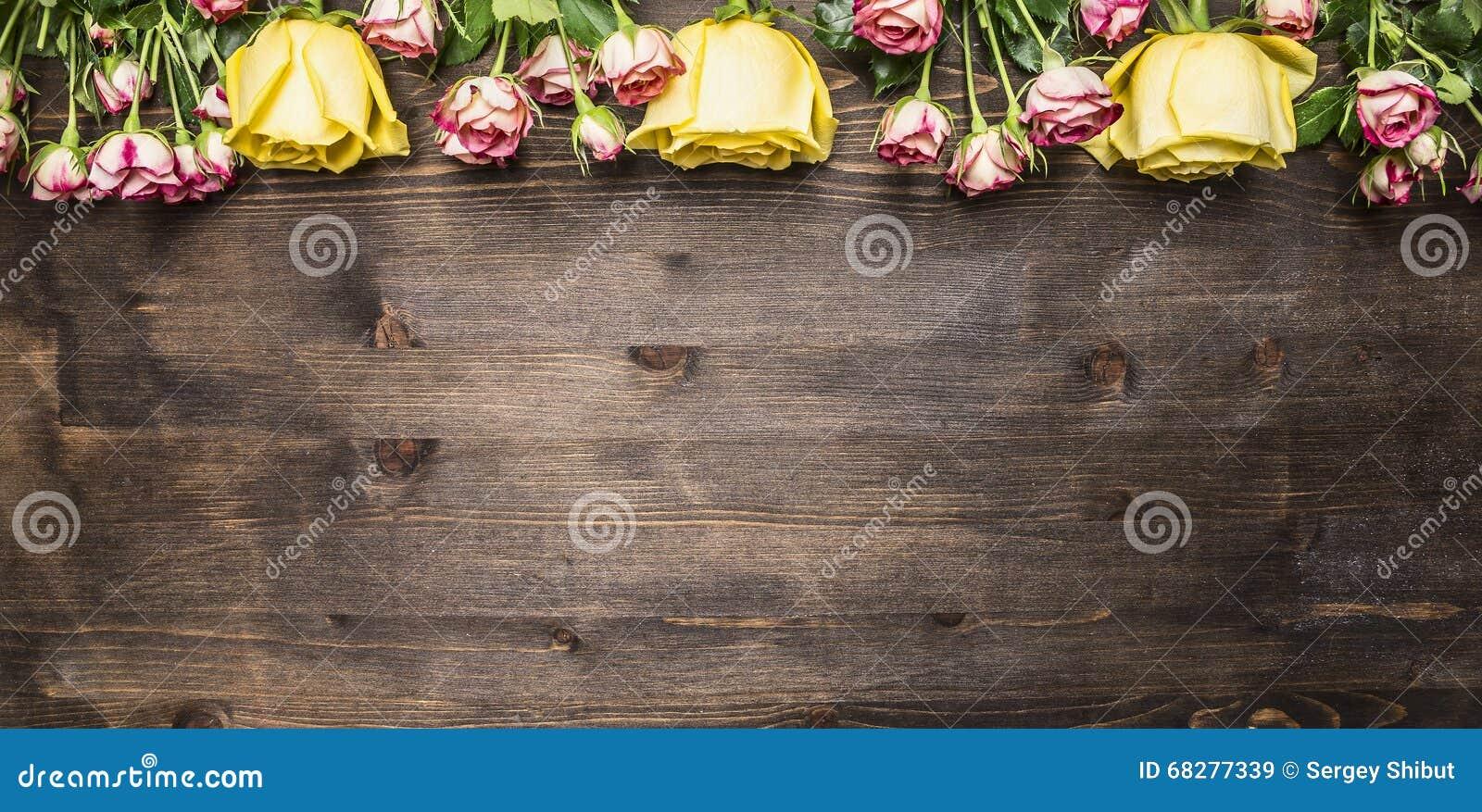 Mazzo delle rose dei generi differenti di fiori, delle rose gialle e del confine rosa delle rose di arbusto, testo del posto sul