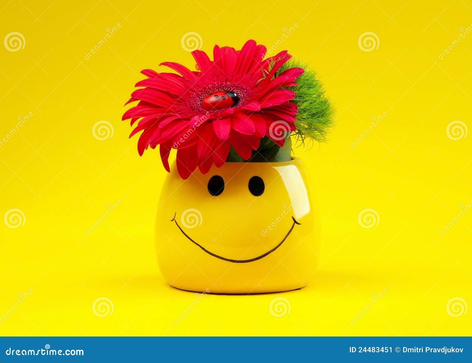 Mazzo Di Fiori Emoticon.Mazzo Di Fiori Immagine Stock Immagine Di Closeup Nave 24483451