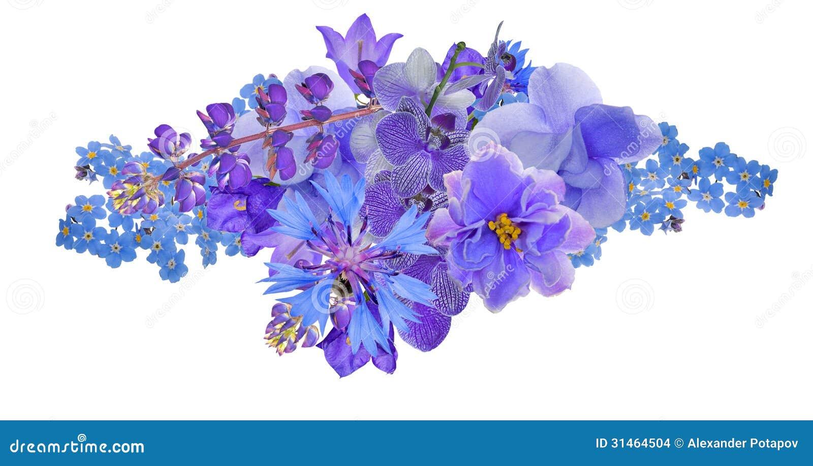 Mazzo Di Fiori Blu.Mazzo Di Fiori Blu Isolati Su Bianco Fotografia Stock Immagine