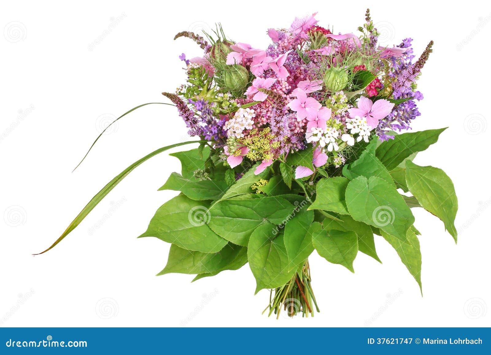 Mazzo di fiori con l 39 ortensia e la lavanda immagine stock for Fiori con la l