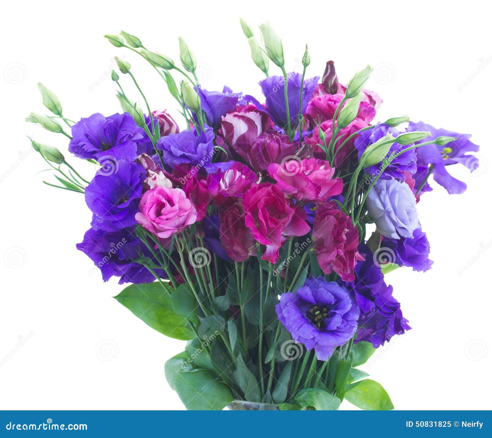 Mazzo di fiori viola di eustoma fotografia stock for Pianta fiori viola