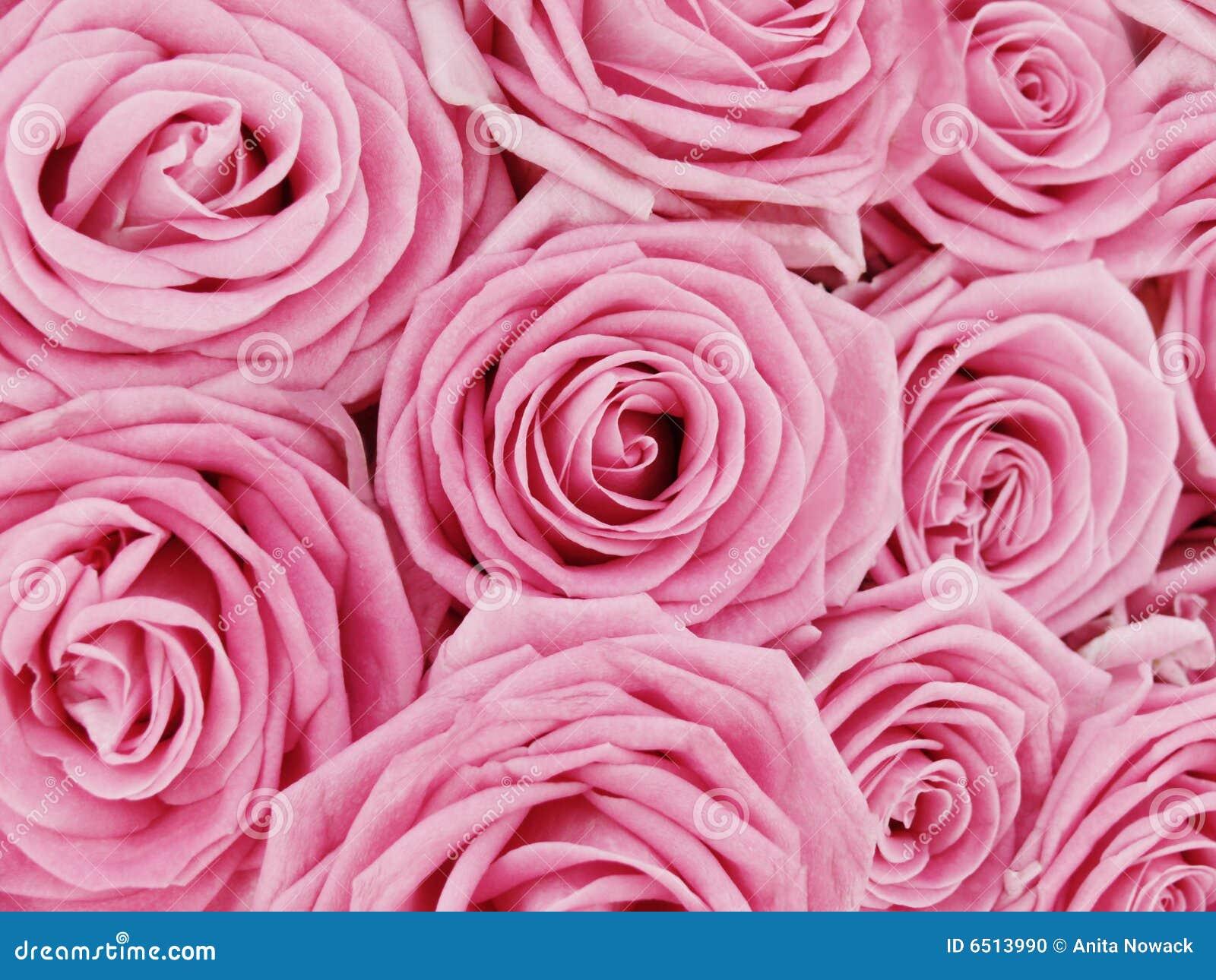 Mazzo Di Fiori Sinonimo.Mazzo Di Rose Dentellare Fotografia Stock Immagine Di Ecologico