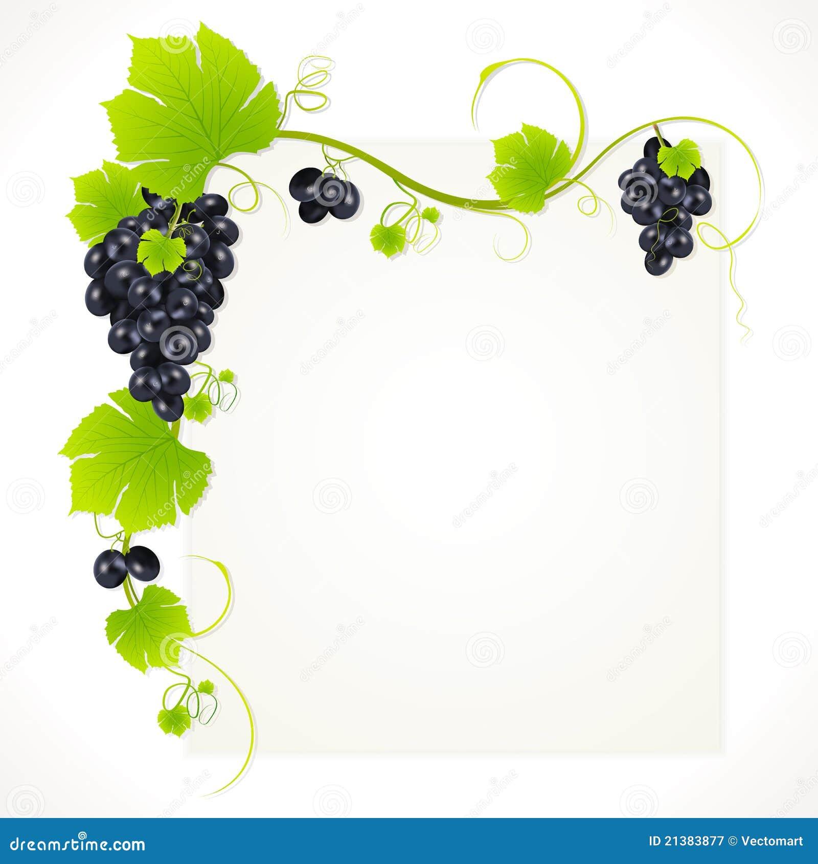 Mazzo di uva