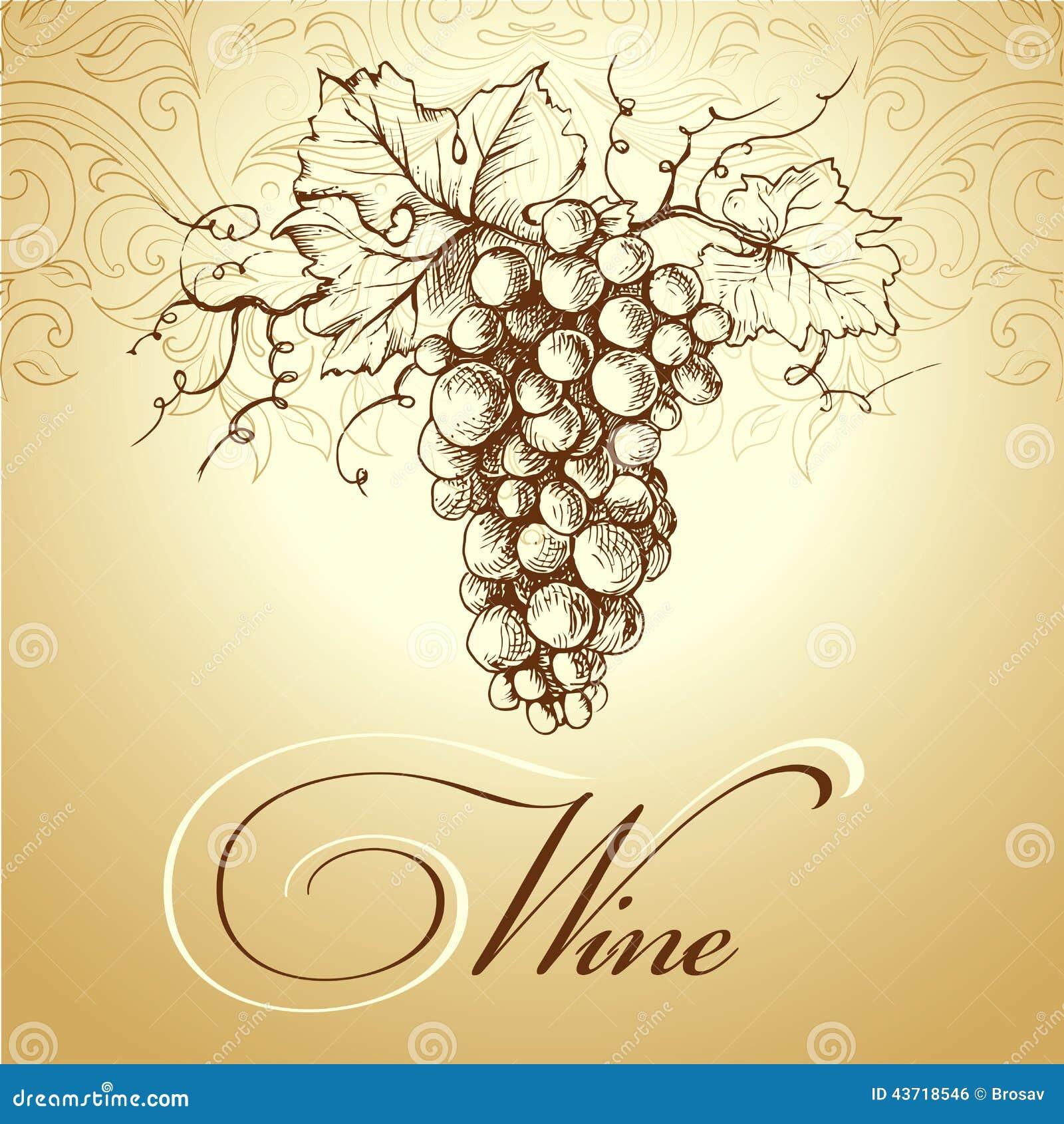 Preferenza Mazzo Di Uva Per Le Etichette Di Vino Illustrazione Vettoriale  CP09