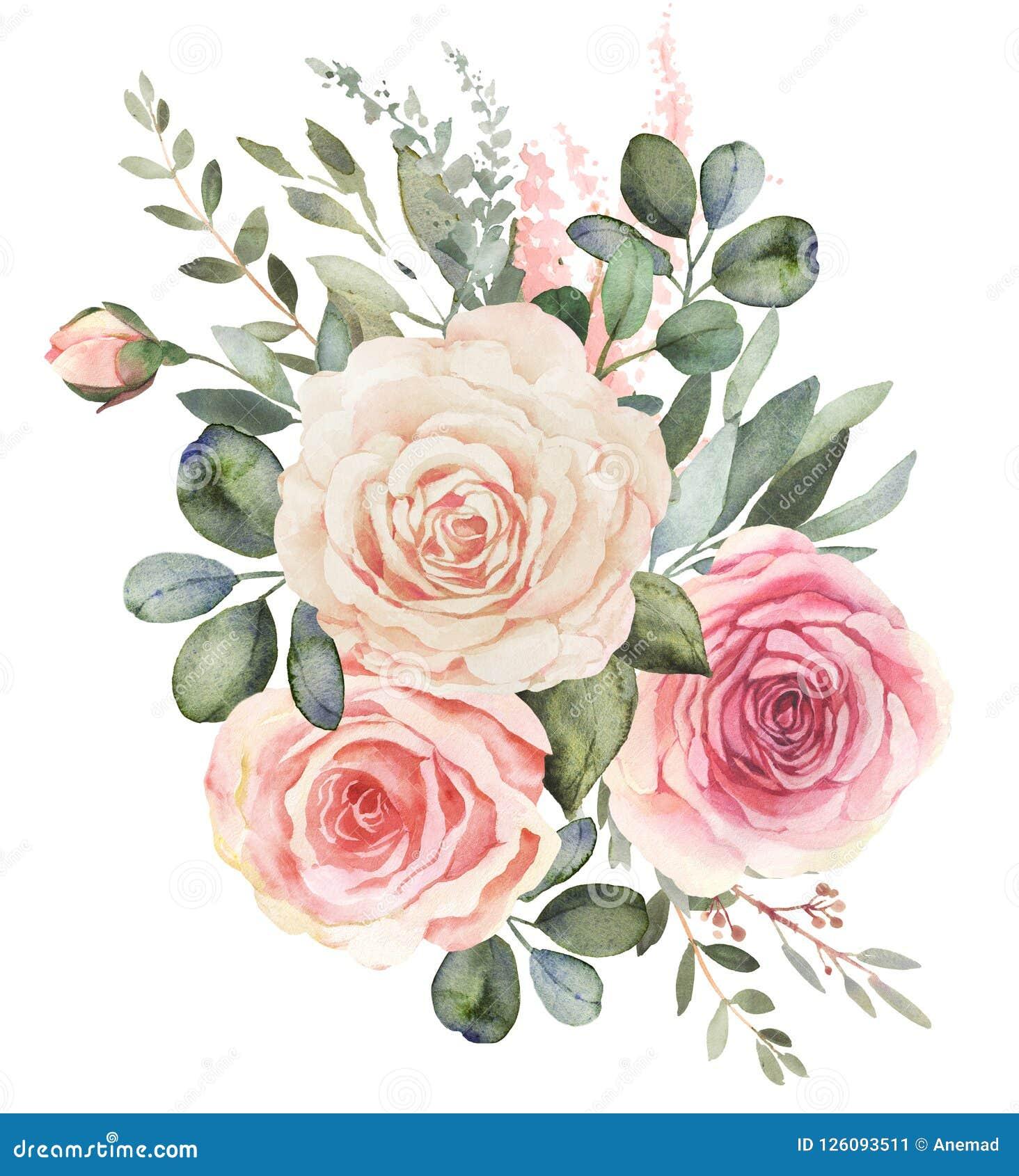 Mazzo floreale dell acquerello con le rose e l eucalyptus