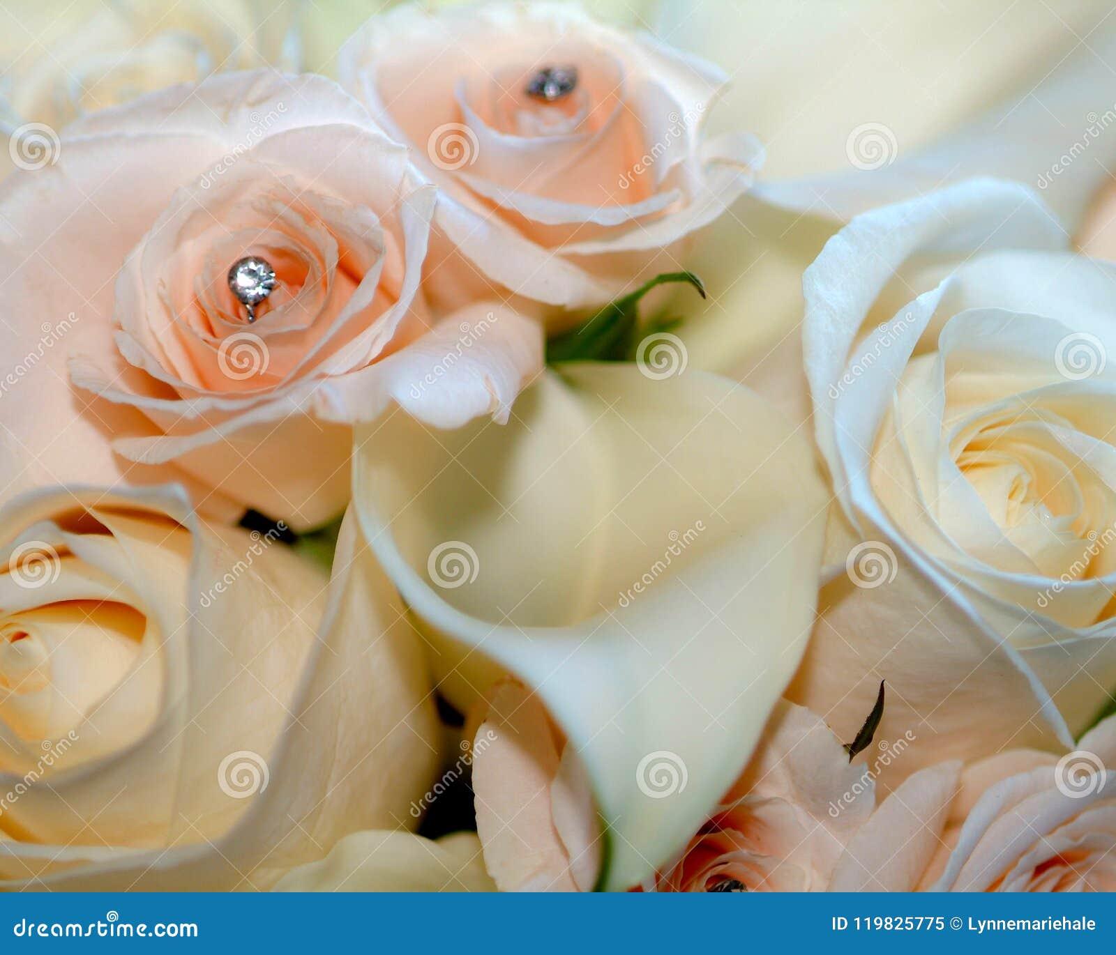 Mazzo nuziale bianco e delicatamente di rosa con la calla