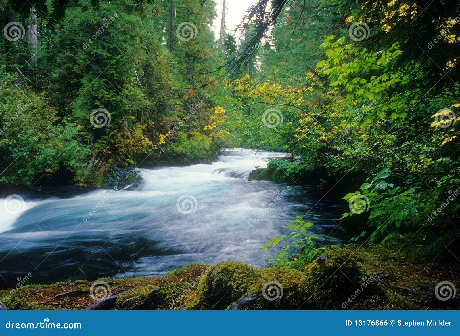 Mckenzie να ορμήξει ποταμών