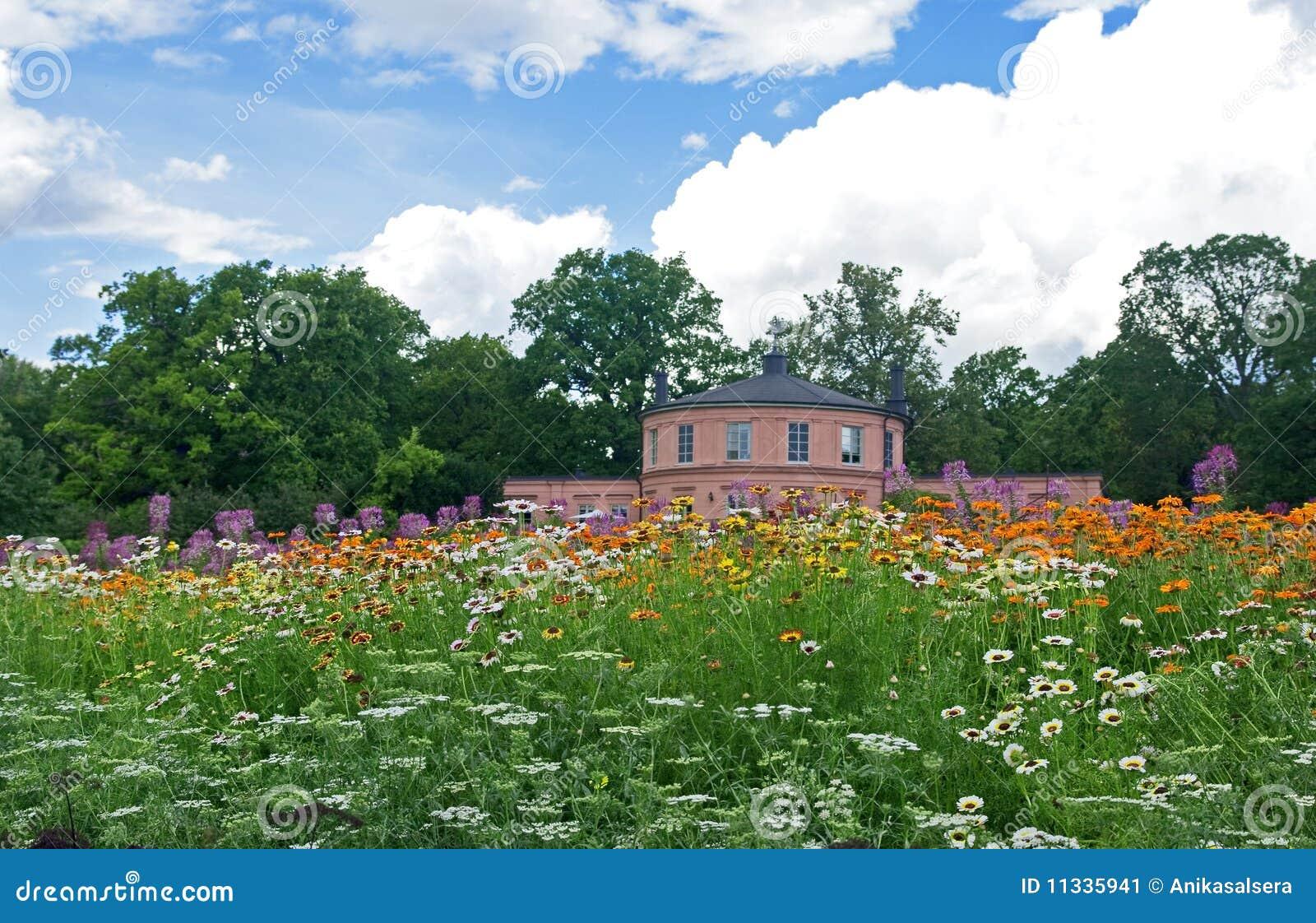 Meadow in a botanical garden