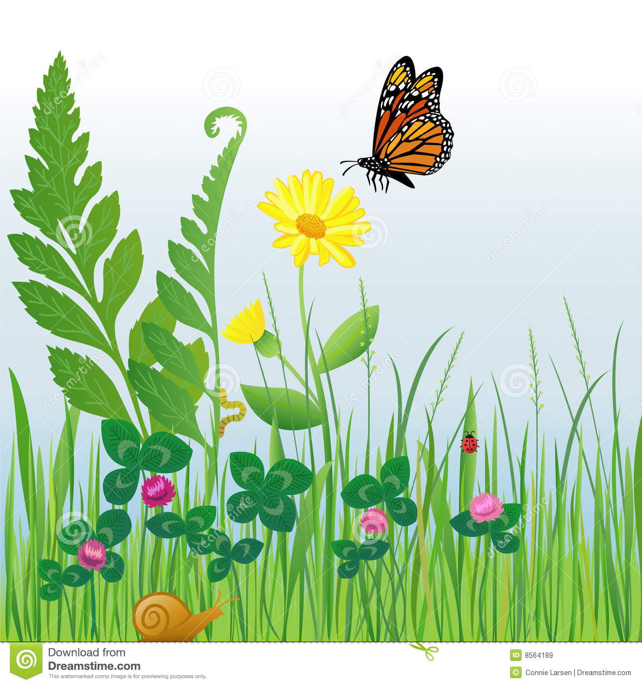 Meadow Flowers And Insects/eps Royalty Free Stock Images ...