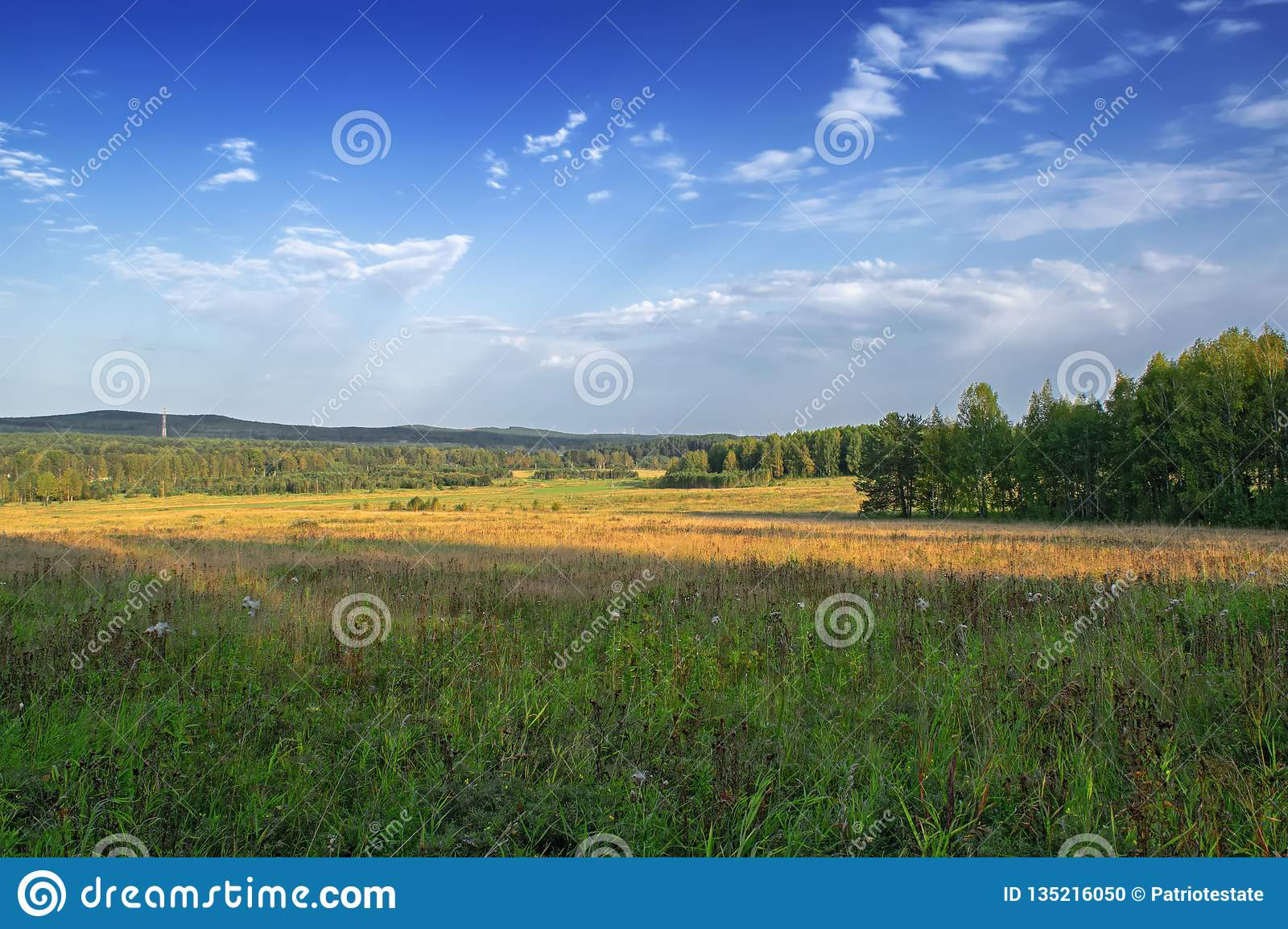 Meadow and forest against the blue sky with light white clouds