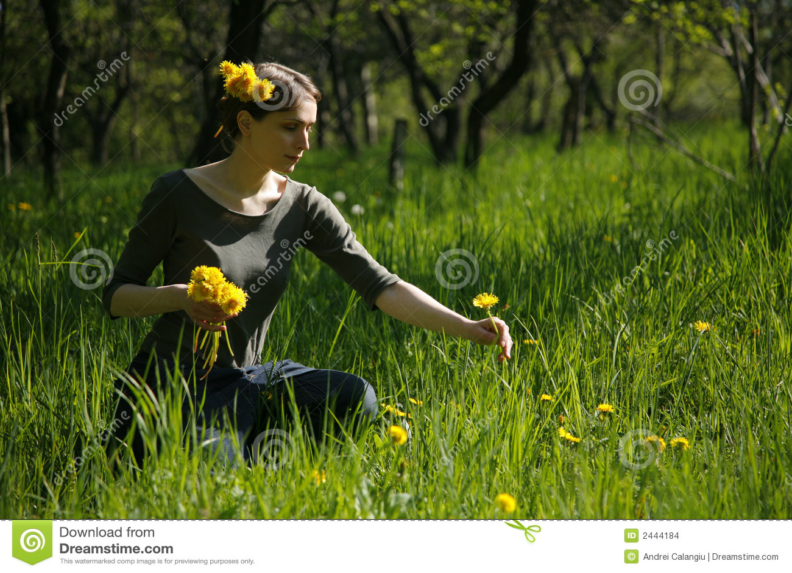 Meadow ogrodniczego lato