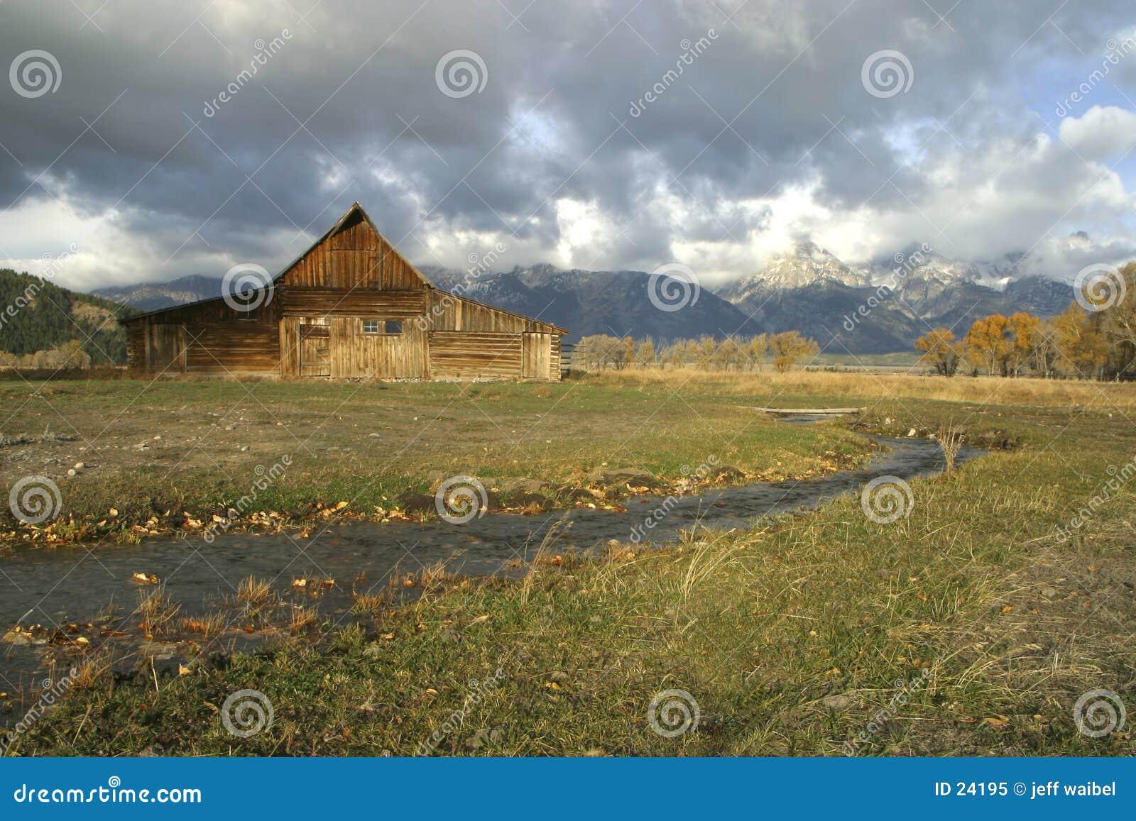 Meadow ranczo