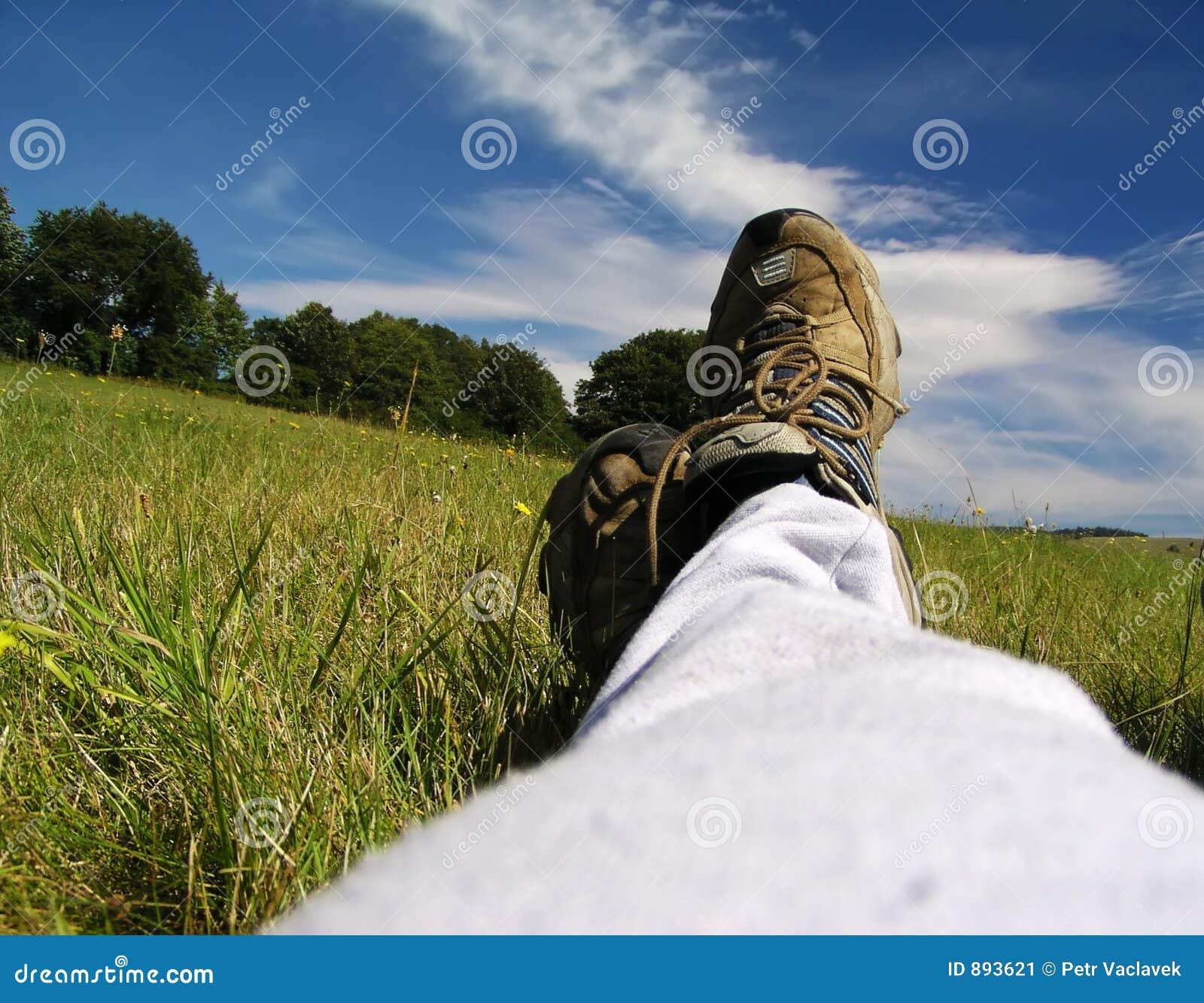 Meadow relaks