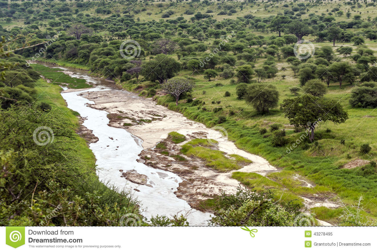 Meadows of Tanzania with river