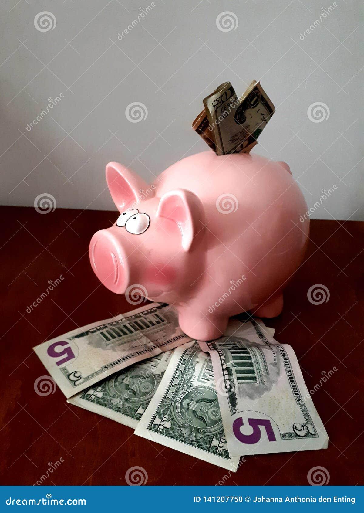 Mealheiro cor-de-rosa com notas de dólar múltiplas