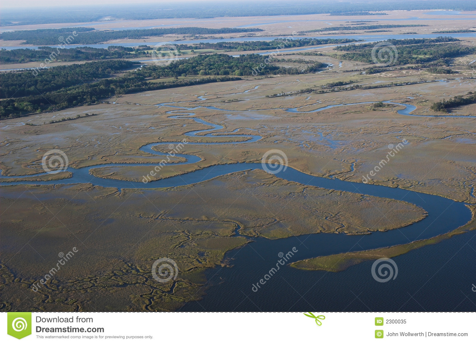 Meandering river delta